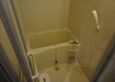 Shower with bathtub