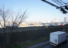 You can see Tama River
