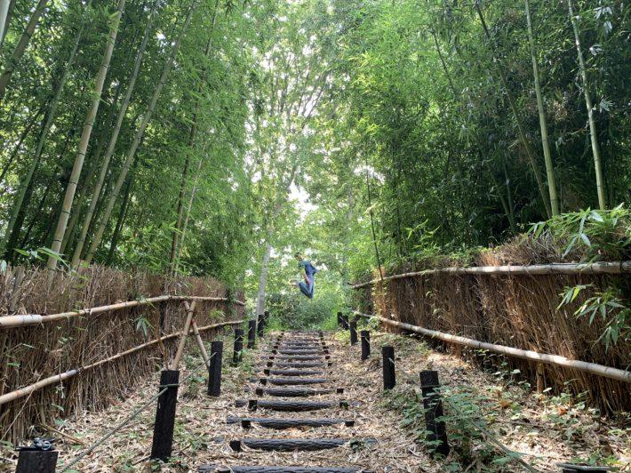 ◎ First House Fujigaoka area walk report ◎