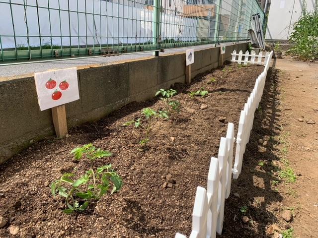 Kitchen garden in First house NishiFunabashi