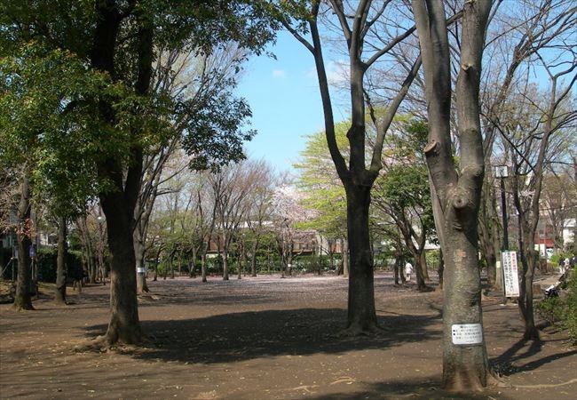 近隣公園内