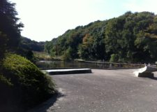 膨大し面積の公園です