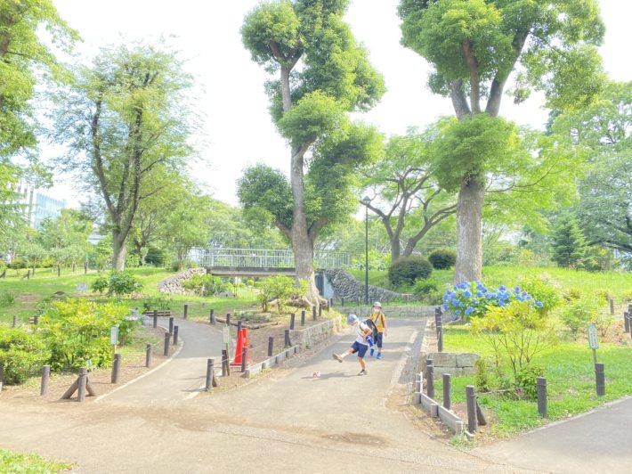 東新宿周辺散策🌳~戸山公園~🌳