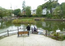 近隣公園(白幡池公園)