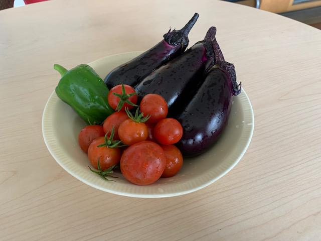 家庭菜園収穫@ファーストハウス西船橋